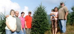 About Mile High Tree Farm